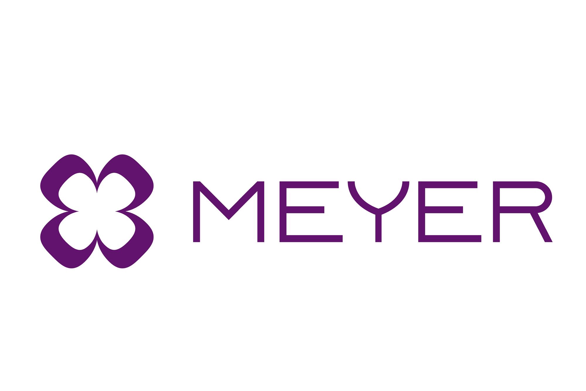 Meyer SLS